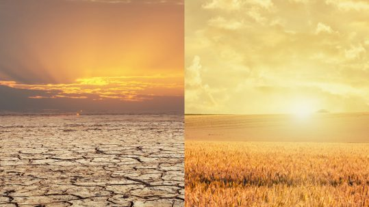 Drought-irrigation-agriculture
